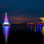 Geelong Christmas Tree (Hanlon Ind)